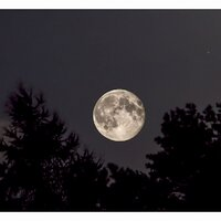 Aug 2014: Super Moon© Ron Peet